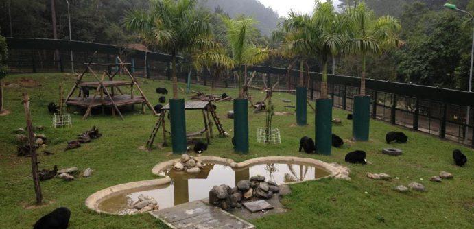 ourwor-endbearbilefarming-sanctuaries-vietnamesanctuarty-banner